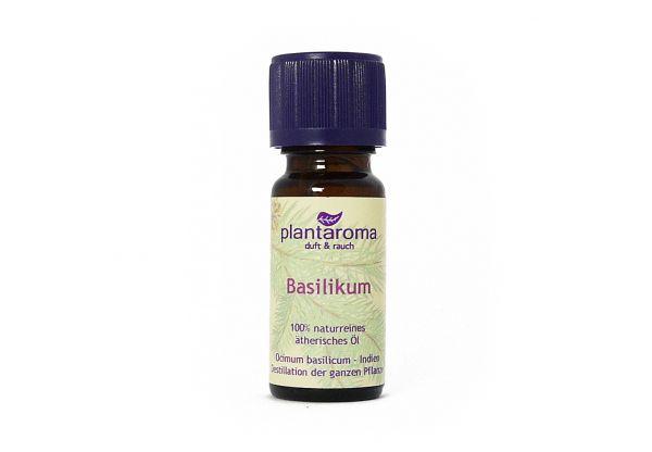 Basilikum, 100 % naturreines ätherisches Öl
