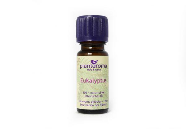 Eukalyptus, 100 % naturreines ätherisches Öl