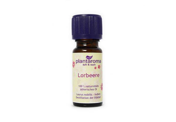 Lorbeere, 100 % naturreines ätherisches Öl